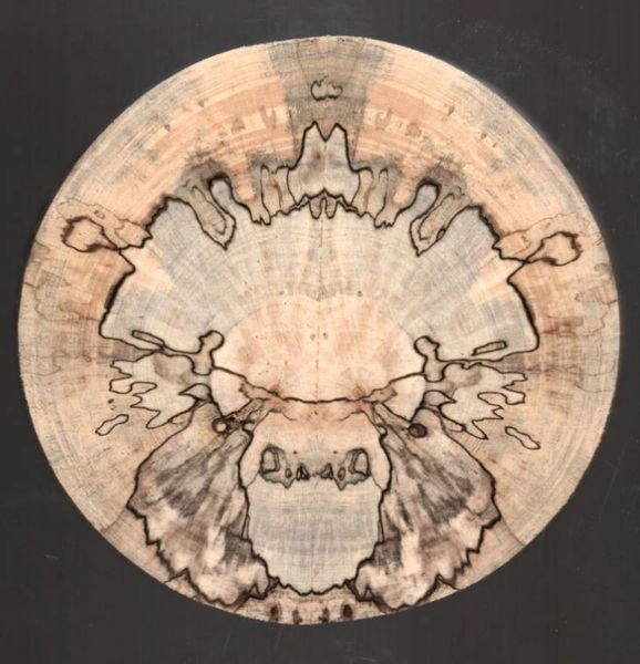 Spalted Treasures Ornament (1267)