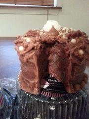 Devil Food Slice-out Cake