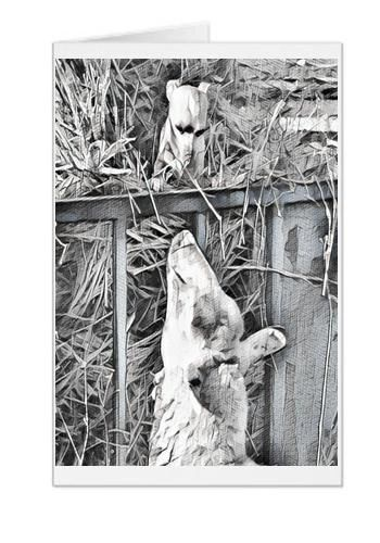 #F30| Around The Farm Greeting Cards | Chihuahua and Sheep Greetings