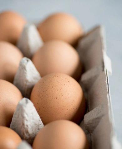 a - Farm Eggs Kingston Ontario