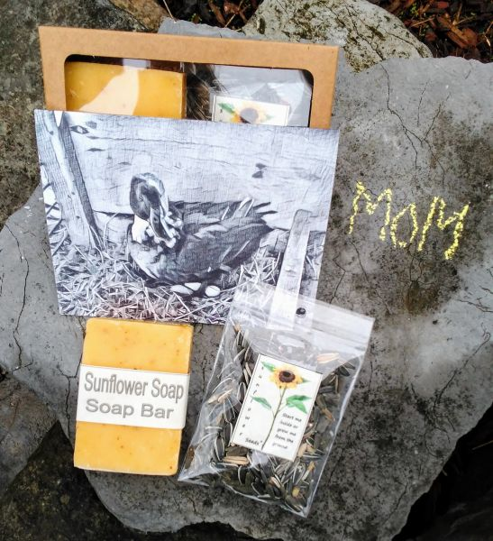 Mother's Day Gift With Mamma Duck Card