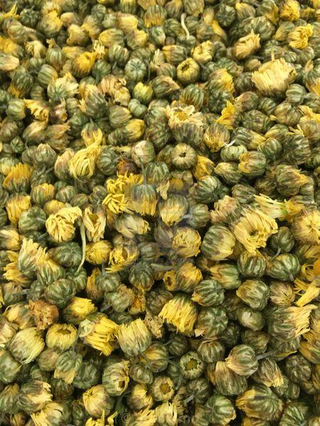 Dried Daisy Flowers Whole Kingston Ontario Canada