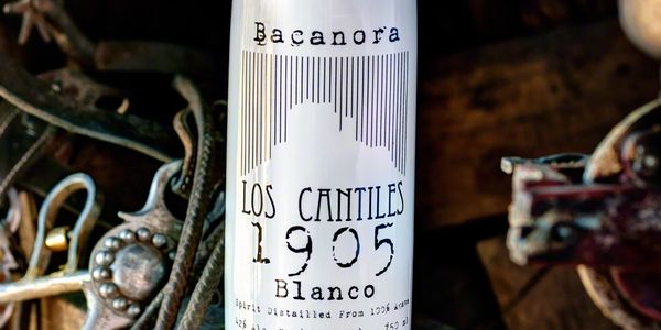 Bacanora los cantiles 1905 blanco bottle distilled spirit tucson from nacori chico mexico sonora