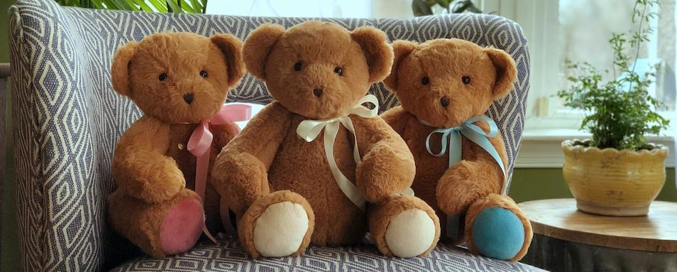 Heartbeat Bears, Teddy Bears with Heartbeat Recorder