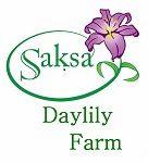 Saksa Daylily Farm