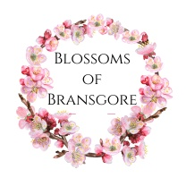 Blossoms of Bransgore