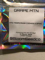 Grape MTN