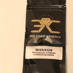 Icculus