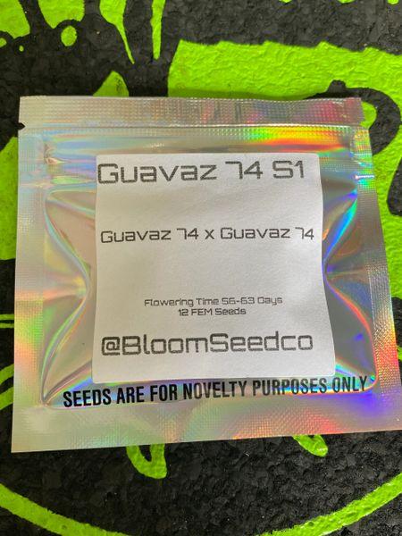 Guavaz 74 S1