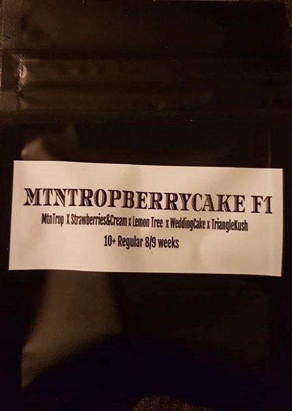 MTN Trop berry cake F1