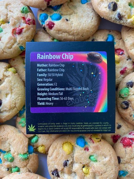 Rainbow chip f2