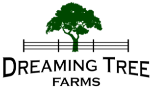 Dreaming Tree Farms