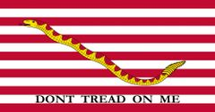 First Navy Jack: Dont Tread on Me H&G