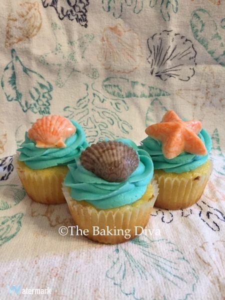 Seashell (per dozen)
