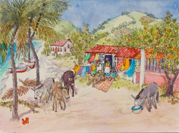 Donkeys Checking Out Jost Van Dyke's Main Street