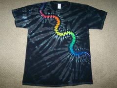 Rainbow Serpent Centipede
