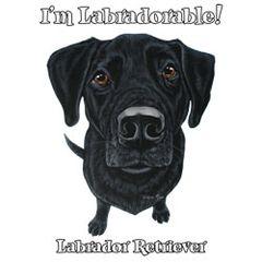 I'm Labradorable - Black Labrador - T-shirt