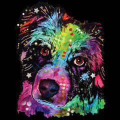 Border Collie - Neon - T-shirt