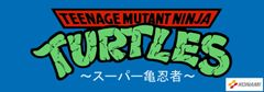 Teenage Mutant Ninja Turtles ( TMNT ) Marquee