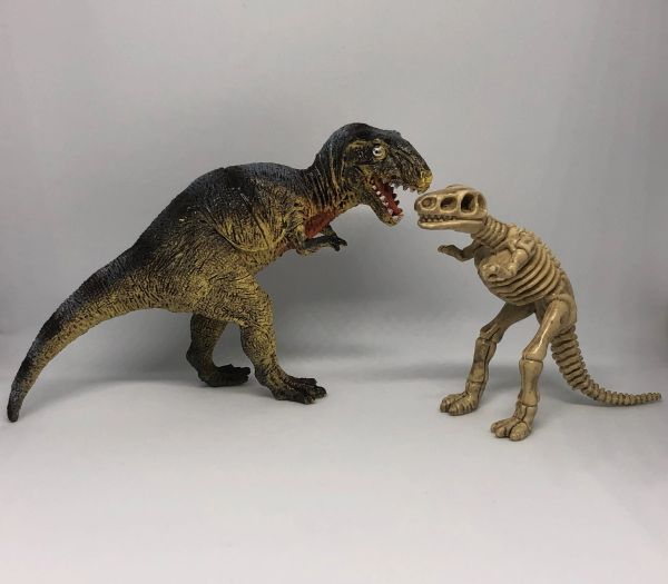 T-Rex and Fossil