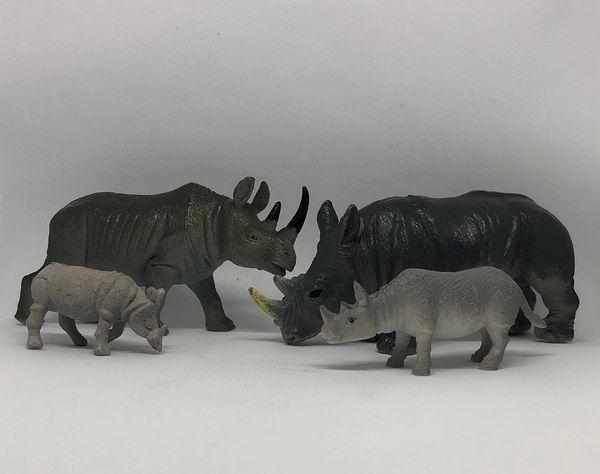 Rhino Family