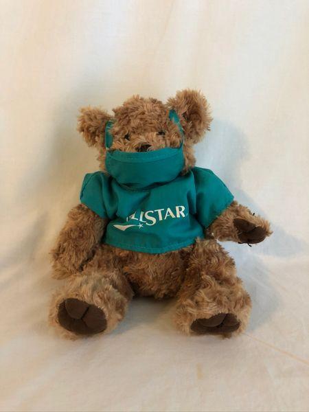 Wellstar Bear 1