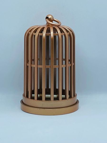 Gold Jail