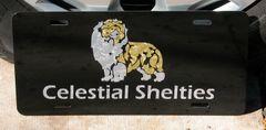 Custom Aluminum License Plate : Any Breed, Any Custom Text