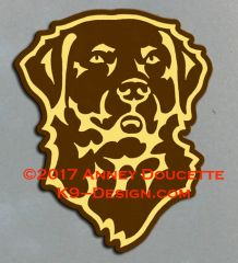 Chesapeake Bay Retriever Headstudy Magnet