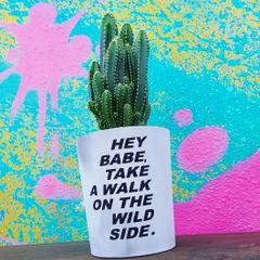 Cement Planter - Hey Babe, Take A Walk On The Wide Side
