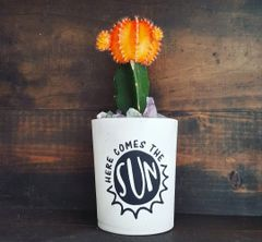 Cement Planters - Here Comes The Sun