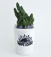 Cement Planter - Wake N Bake