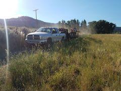 Jefferson Center Ranch Field Day