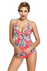 S742 Butterfly and Floral Print Reddish Retro High Waist Swimsuit