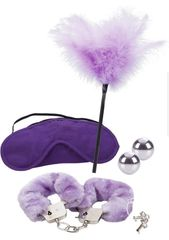 976010 Shades Of Purple Playroom Kit