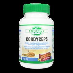 Cordyceps (Mushroom Extract)