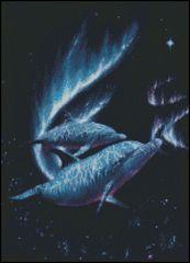 Celestial Dolphin Pair