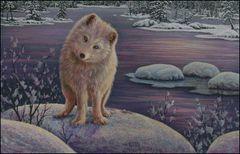 Curiosity Arctic Fox