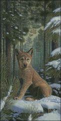 Shadowland Pup
