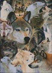 Wolves Alive