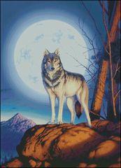 Timber Wolf - SR