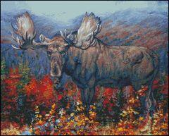 Adirondack Autumn Moose