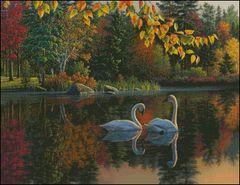 Autumn Swans