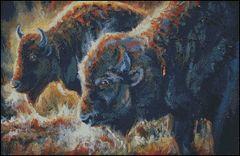 Backlight Bison