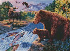Americas Wildlife