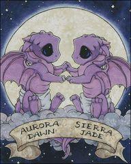 Dragon Hatchling Twins
