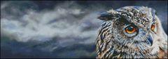Eagle Owl Storm