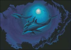 Dolphin Seas