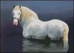 Stone Stallion