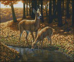 Autumn Innocence I